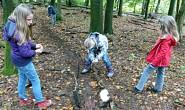 Kinder wühlen im Waldboden