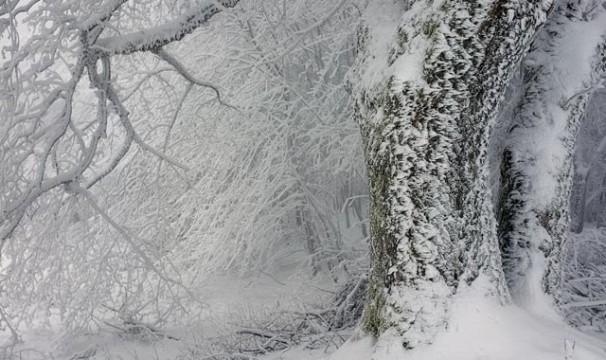 OL-Schnee11-0401