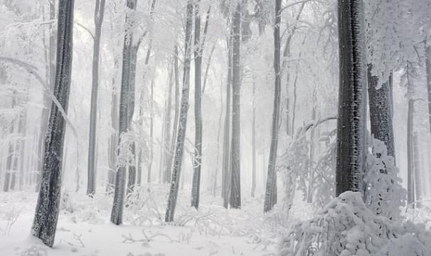 OL-Schnee14-0401