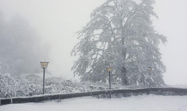 OL-Schnee16-0401