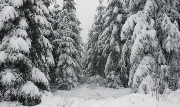 OL-Schnee6-0401