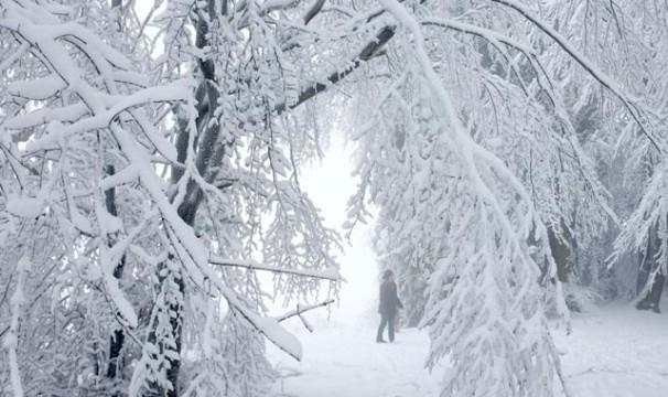 OL-Schnee8-0401