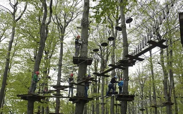 Wer den Adrenalinschub sucht, kann sich auf den Kletterwald begeben. Foto: archiv