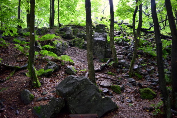 Blockhalden bilden das typische Landschaftsbild auf dem Vogelsberg.