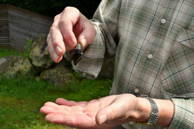 Magnetismus auf dem Hoherodskopf: Eisenhaltiges Basalt macht es möglich.