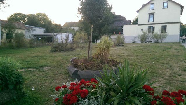 Noch schmücken das Grundstück direkt gegenüber des Casino Carre Grundstücks nur Blumen