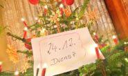 Bis es an Heilig Abend unter den Weihnachtsbaum geht, dauert es für einige Menschen erst ein Weilchen: Sie müssen nämlich arbeiten. Foto: jal