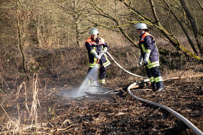 2019-02-26 Flaechenbrand-Antrifttal-5