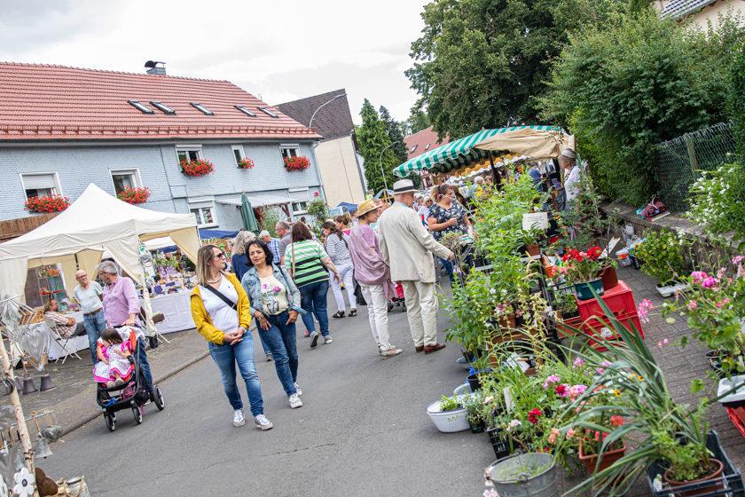 2019-07-07_MühlenfestStumpertenrod (20 von 31)