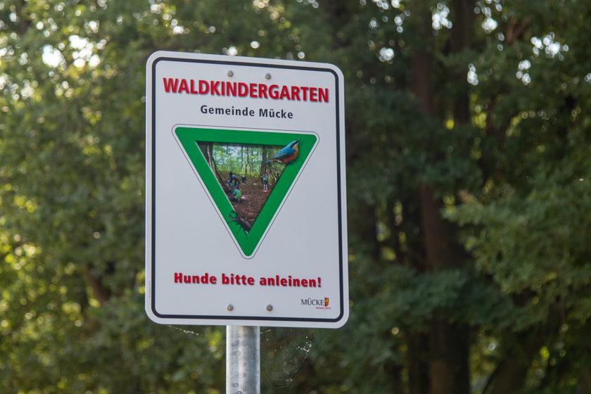 2019-08-30_Eroeffnung-Waldkindergarten_Muecke-1