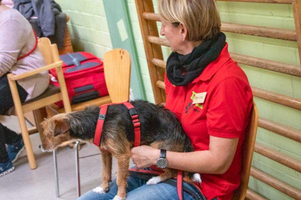 Therapiehunde Osthessen Kompass Leben (17 von 27)